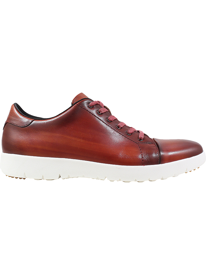 HAWKINS CAP TOE LACE CRANBERRY  STACY ADAMS